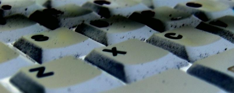 fot. www.freeimagines.com