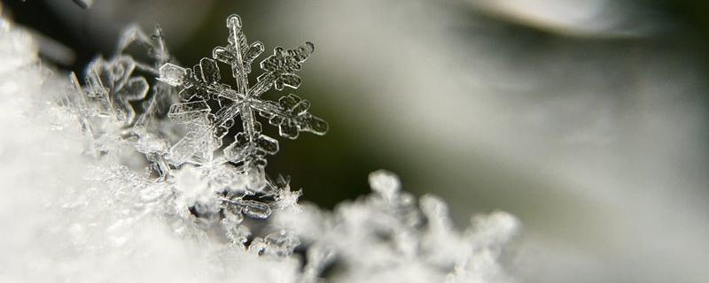 Płatki śniegu w dużym powiększeniu Photo by Aaron Burden on Unsplash